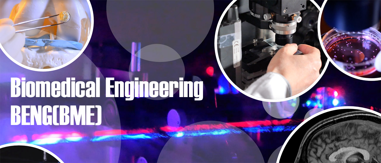 Bachelor of Engineering in Biomedical Engineering [BEng(BME)] [JS6925]