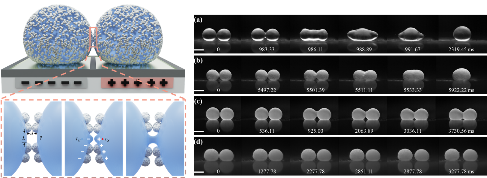 A study of Electro-coalescence of Non-wetting Droplets and Their Application